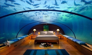 Interior_design_aquarium_2560x1600